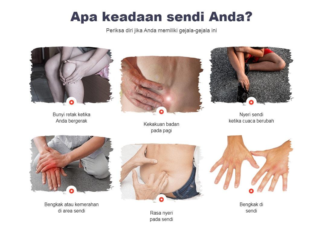 jointsflexa 1
